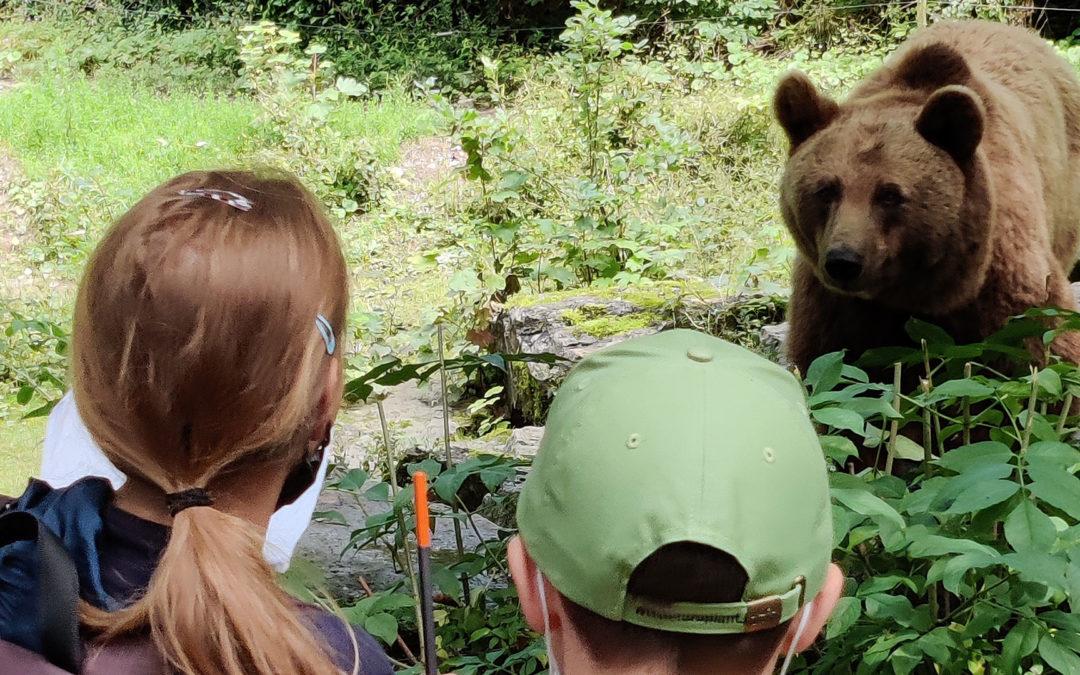 Wildpark Ferienprogramm 2021