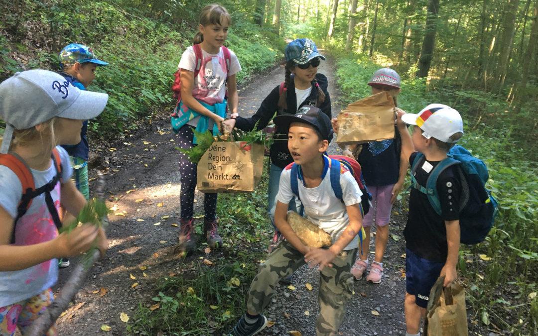 Wanderung Hamberg Ferienprogramm 2021